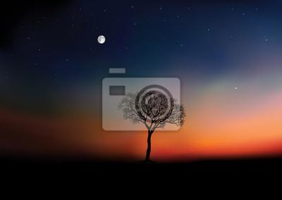 Obraz Pendant la saison d'hiver, le jour se lève sur un paysage de campagne, avec pour unique décor un arbre sans feuille sous un ciel étoilé.