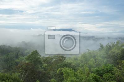Phu Kradueng Mountain