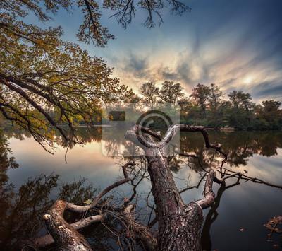 Piękna jesień zachód słońca nad rzeką w lesie