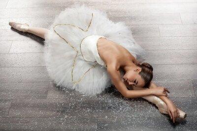 Obraz Piękna młoda baletnica w balecie stanowią