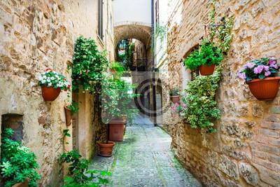 Piękna wieś Spello (Umbria, Włochy) z kwiatowymi ulicach