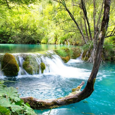 piękne waterfals jeziora Plitvice