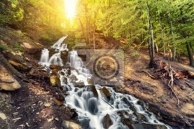 Piękne wodospad w lesie wiosny