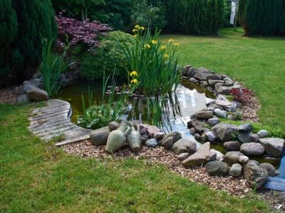 Obraz Piękny klasyczny ogrodowy rybi staw otaczający trawy ogrodnictwa tłem