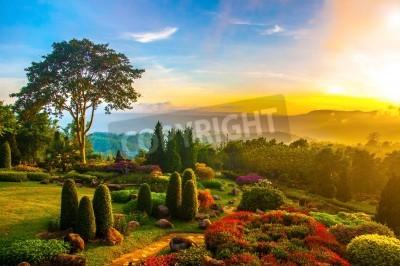 Obraz Piękny ogród z kolorowymi kwiatami na wzgórzu z zachodem słońca w godzinach porannych.