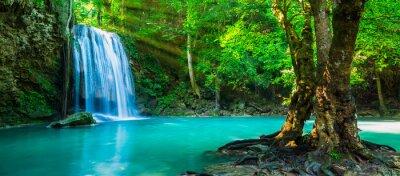 Obraz Piękny wodospad w głębokim tropikalnym lesie deszczowym.
