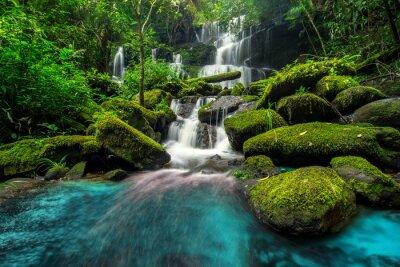 Obraz piękny wodospad w zielonym lesie w dżungli