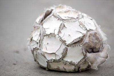 Obraz Piłka nożna II