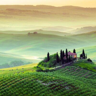 Obraz Podere in Toscana, paesaggio italiano