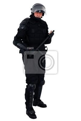 Policjant zamieszek z pełnym wyposażeniem