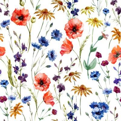 Obraz Polne kwiaty