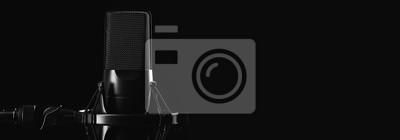 Obraz Profesjonalny mikrofon studyjny samodzielnie na czarno