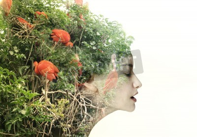 Obraz Profil artystyczny surrealistyczny kobiet w metamorfozie z naturą