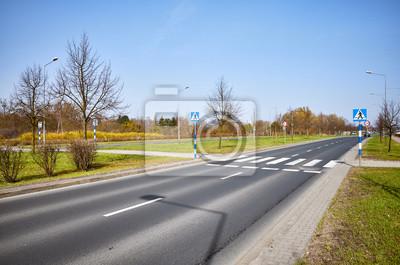 Przejście dla pieszych z zebry i znaków drogowych.