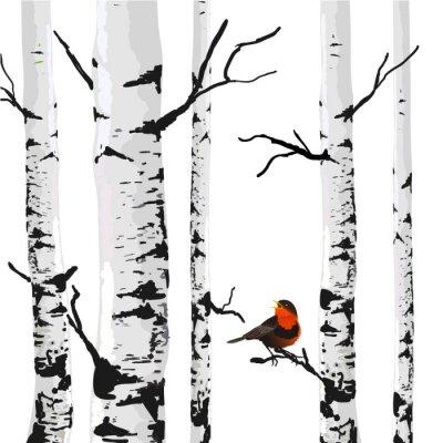 Obraz Ptak z brzozy, rysunek wektor z edytowalnych elementów.