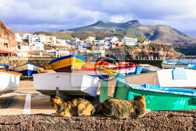 Puerto de Sardina - traditional fishing village in Gran Canaria. Colorful boats with cats. Canary islands