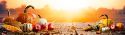 Obraz Pumpkins Apples And Corncobs On Wooden Harvest Table With Sunset Background - Thanksgiving And Harvest