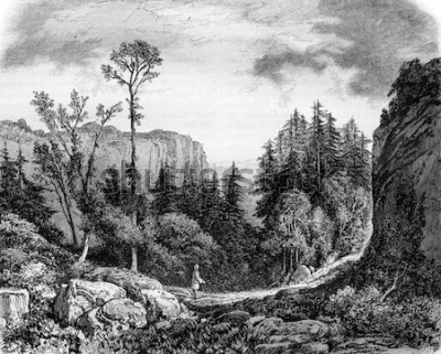 Obraz Pustynia JJ Rousseau, vintage grawerowane ilustracji. Magasin Pittoresque 1861.