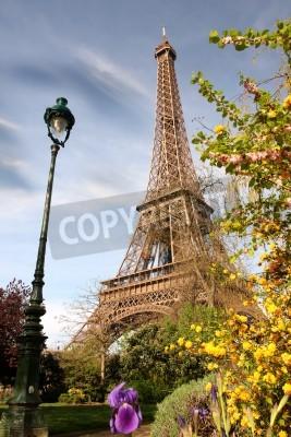 Obraz Rano Wiosna z Wieży Eiffla, Paryż, Francja