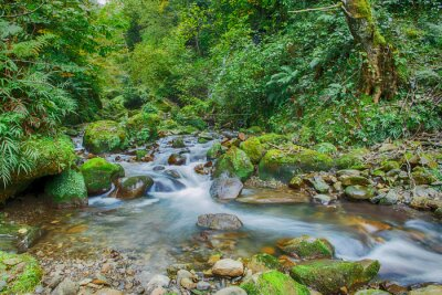 Obraz Rapids górskiej rzeki Kaukaz