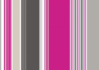 Obraz Rayures bayadères antracyt rose gris Fuschia (CS5)