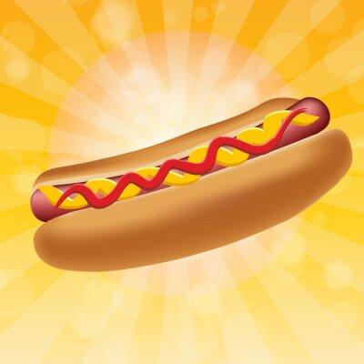 Obraz Realistyczne hot dog ilustracji wektorowych