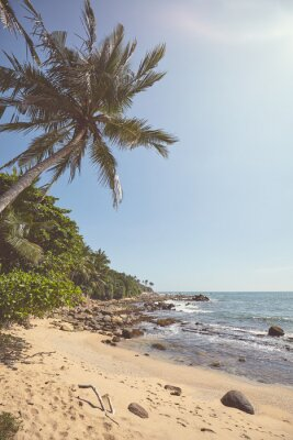 Retro color stylized picture of a tropical beach, summer holidays concept.