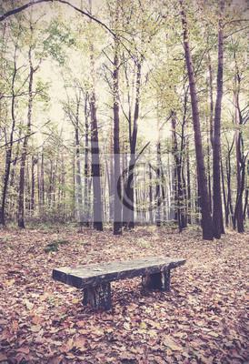 Retro filtrowany obraz ławce w lesie.