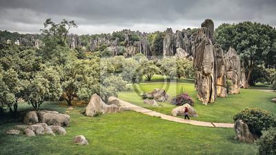 Retro stonowany widok na Kamienny Las (Shilin). Dwie części tego malowniczego obszaru należą do światowego dziedzictwa UNESCO jako część południowochińskiego krasu, Yunnan, Chiny.