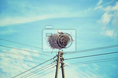 Retro stonowanych bocianie gniazdo na słupie linii energetycznej