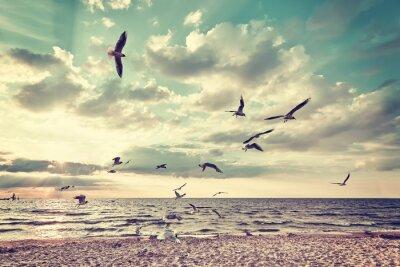 Retro stylizowane plaża z lotu ptaków na zachód słońca