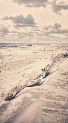 Retro toned picture of a piece of wood on beach.