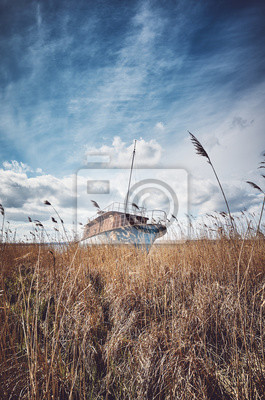 Retro toned picture of a shipwreck in the reeds