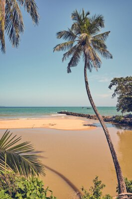 Retro toned picture of a tropical beach with coconut palm trees, Sri Lanka.