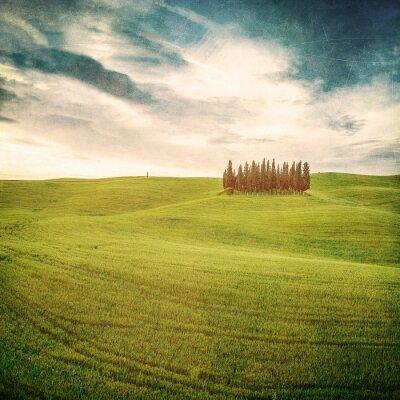 Obraz rocznika toskański krajobraz
