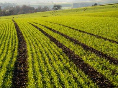Obraz Rolnictwo w zimie