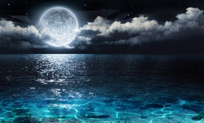 Obraz romantic and scenic panorama with full moon on sea to night