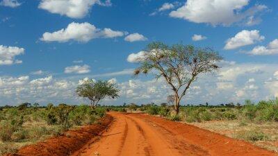 Obraz Rote Erde w Tsavo, Kenia