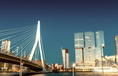Rotterdam skyline z Erasmus Bridge