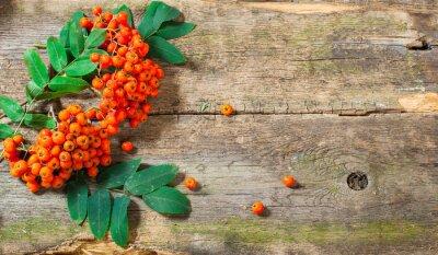 Obraz Rowan na vintage tle drewnianych tacach jesieni koncepcji