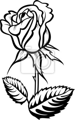 Róża Z Liści Vector Sylwetka Tatuaż Obrazy Redro