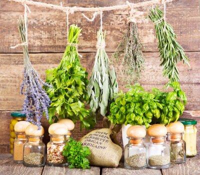 Obraz różne zioła świeże i suszone