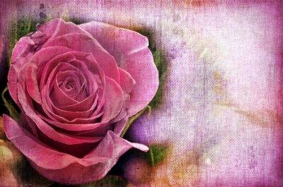 Obraz Różowe Roses. Vintage Styled.