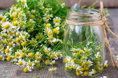 Obraz Rumianek kwiaty w szklanym słoiku na drewnianym tle