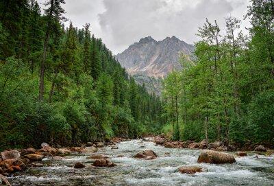 Obraz Rzeka w górach we wschodniej Sayan