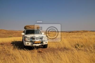 Safari w Namibii