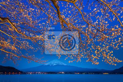 sakura oddziałów Fuji góry i jeziora tle