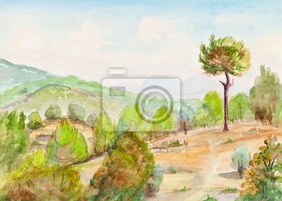 Obraz Samotna sosna na wzgórzu
