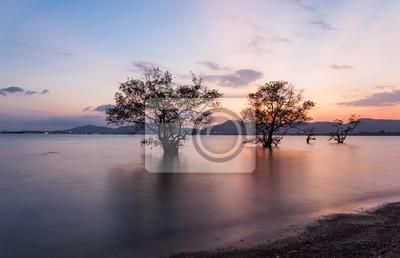 Samym Podczas Sunrise. Piękny Krajobraz naturalny