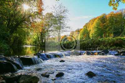 Obraz Scena rzeki jesienią